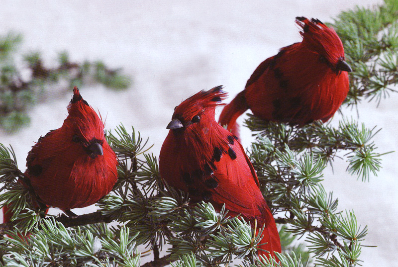 Lovely Bird Ornaments For Christmas Trees Part - 14: Christmas Tree Clip-On Cardinal Ornaments (Set Of 18)